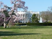 white-house-451544_1920