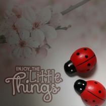 enjoy-the-little-things-906291_1920