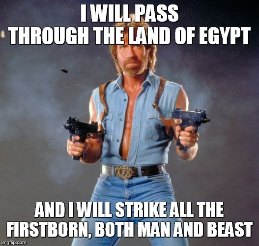 Meme Bible - Exodus 12 (12)