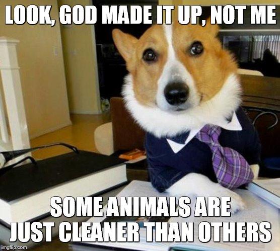 Meme Bible - Leviticus 11